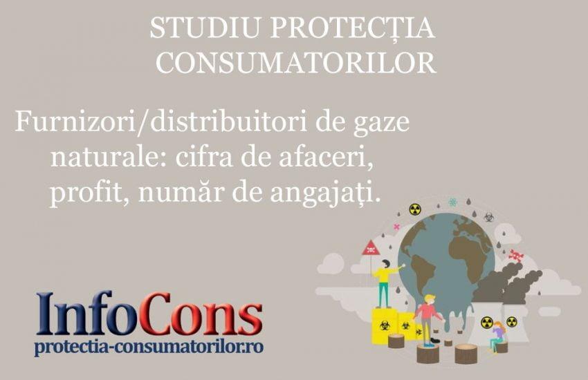 STUDIU PROTECȚIA CONSUMATORILOR Furnizori/distribuitori de gaze naturale: cifra de afaceri, profit, număr de angajați